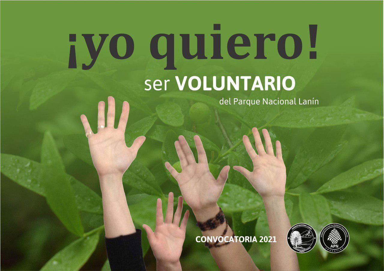 pnl voluntarios